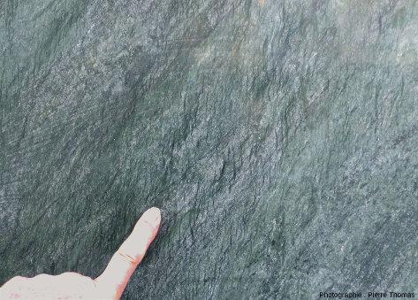 Plaque de péridotite plus ou moins schistosée et serpentinisée ornant l'entrée d'un immeuble