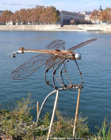 Libellule géante rappelant une Meganeura installée sur les berges du Rhône
