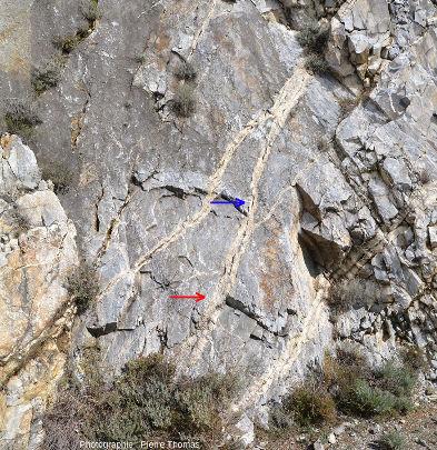 Vue partielle du bord de la route D619 où l'on voit un réseau de filons recouper le marbre urgonien, Sournia, Pyrénées-Orientales
