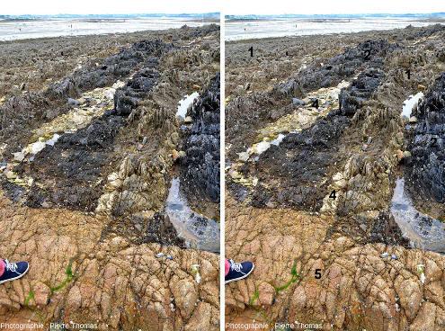 Interprétation rapide, faite lors d'une simple promenade, de la géologie du Sud-Est de l'ile Callot (Finistère), tout petit secteur de la chaine hercynienne