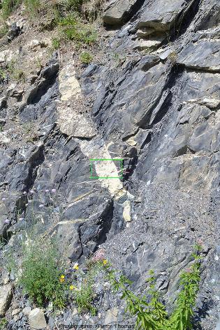 Vue globale sur un filon de quartz + calcite quasi vertical recoupant des marnes noires schistosées liasiques dans la vallée de la Lignarre (entre le col d'Ornon et Bourg-d'Oisans)