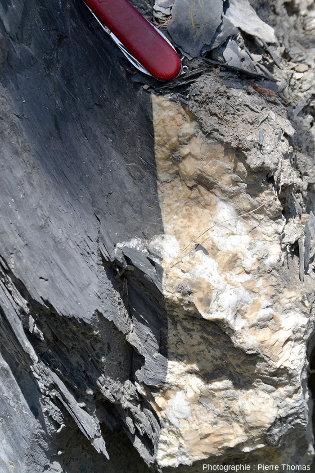 Zoom sur un détail de la bordure du filon de quartz + calcite de la figure précédente