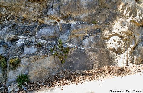 Deux filons de quartz + calcite dans le même secteur de la vallée de la Lignarre