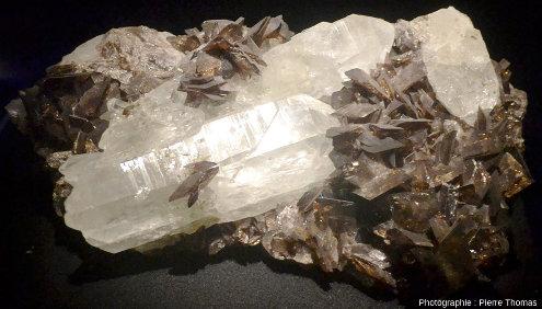 Échantillon provenant d'un filon quartz-axinite photographié au Muséum de Grenoble