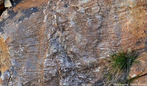 Détails sur la stratification des quartzites briançonnais de la photo précédente dans les gorges du Guil