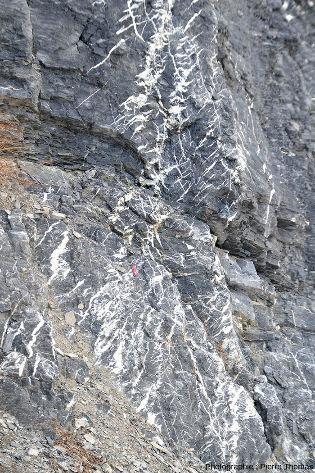 Réseau complexe de fentes en échelons sur le bord de la route descendant du Col du Lautaret vers Bourg-d'Oisans (Hautes-Alpes)