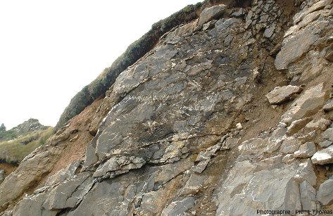 Réseau de fentes en échelons sur le bord de la route descendant du Col de la Pierre-Saint-Martin vers Arette (Pyrénées-Atlantiques)