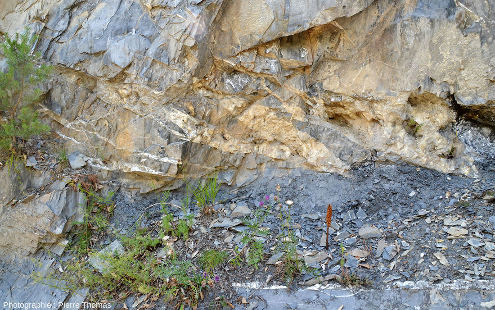 Fentes en échelons métriques, remplies de quartz et de calcite, dans la vallée de la Lignarre, Isère