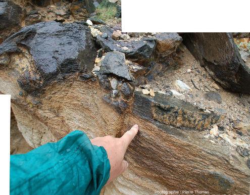 Gros plan sur deux boudins d'amphibolite (en haut à gauche et en bas à droite) emballés dans des gneiss dont la schistosité/foliation moule les boudins, Ladakh