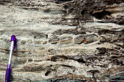 Niveau boudiné (sans doute des méta-dolomies) au sein de marbres et cipolins (méta-calcaires plus ou moins purs), Baie de Spartaia, Procchio, côte Nord de l'ile d'Elbe (Italie)