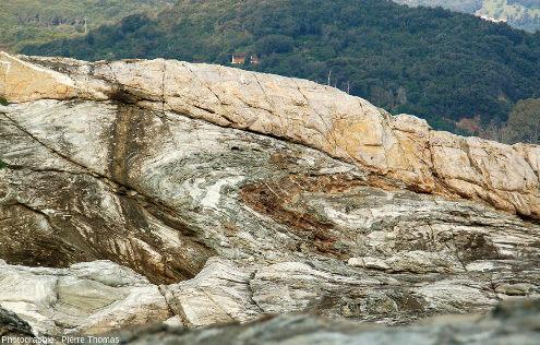 Vue élargie sur l'affleurement de méta-calcaires à boudins et plis, ile d'Elbe (Italie)