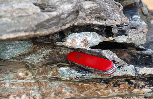 Détail sur des boudins, leurs minéraux, la schistosité des méta-marnes les emballant, Baie de Spartaia, Procchio, côte Nord de l'ile d'Elbe (Italie)