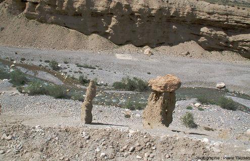 Détail de figures d'érosion (pinacle, cheminée de fée) dues à l'érosion du versant dominant la rivière Tsarap, région de Sarchu, Ladakh indien