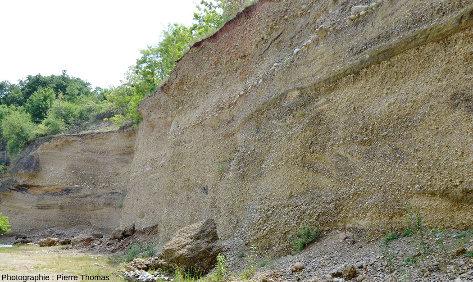 Vue d'ensemble de la partie Sud du front de taille où l'on retrouve tout ce qui a été décrit dans la moitié Nord, Chanas, Isère