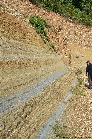 Détail sur les sédiments marins du Pliocène inférieur, alternance d'argiles grises et d'argiles sableuses jaunes, Chanas (Isère)