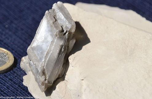 Zoom sur le plus gros des deux cristaux de gypse automorphe (5cm dans sa plus grande dimension)
