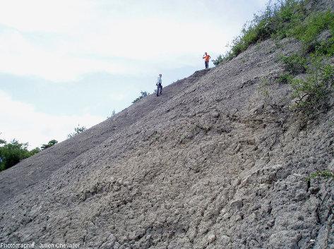 Vue générale sur les affleurements des argiles würmiennes à gypse de Cornillon-en Trièves