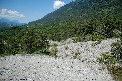 Affleurement d'argiles würmiennes à gypse au-dessus du lac de Monteynard (Isère)
