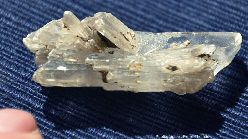 Détail de l'un des cristaux de gypse de la photo d'ensemble montrant la variété des formes cristallines et de leurs associations