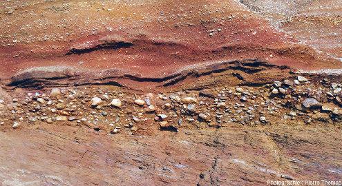 Zoom sur l'unité 1 de la série sédimentaire pléistocène de la plage de la Mine d'or de Pénestin (Morbihan)