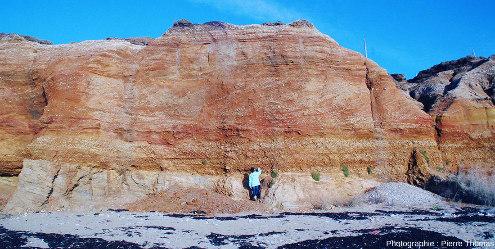 Vue générale centrée sur l'unité 2 de la série sédimentaire pléistocène de la plage de la Mine d'or de Pénestin (Morbihan)