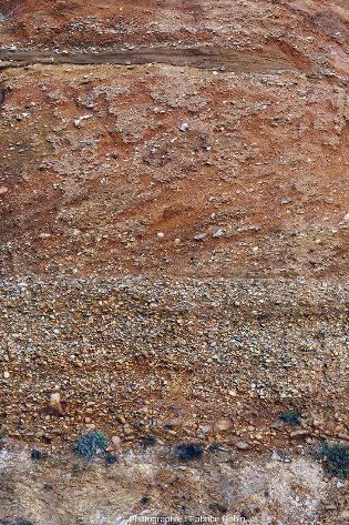 Zoom sur l'unité 2 de la série sédimentaire pléistocène de la plage de la Mine d'or de Pénestin (Morbihan)