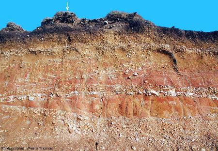 Vue sur un fragment de paroi de tranchée dans les couches rouges de Pénestin (Morbihan)