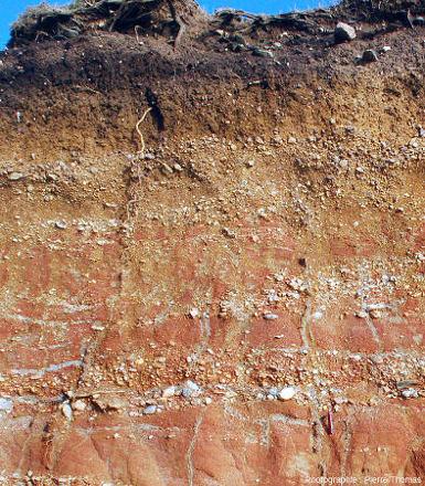 Partie supérieure de la tranchée dans les couches rouges de Pénestin (Morbihan)