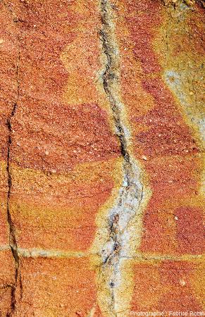 Vue montrant différents stades de réduction du fer dans des sables autour d'une racine morte