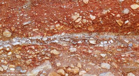 Zoom sur une racine morte horizontale entourée de sable dépourvu d'hydroxydes ferriques
