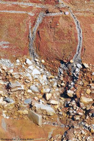 Vue montrant des racines mortes verticales et horizontales entourées de sable dépourvu d'hydroxydes ferriques