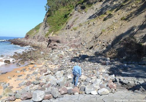 Localisation des possibles traces de racines (visibles au centre de la photo) au pied d'une falaise recoupant le Jurassique supérieur, Colunga (Asturies, Espagne)