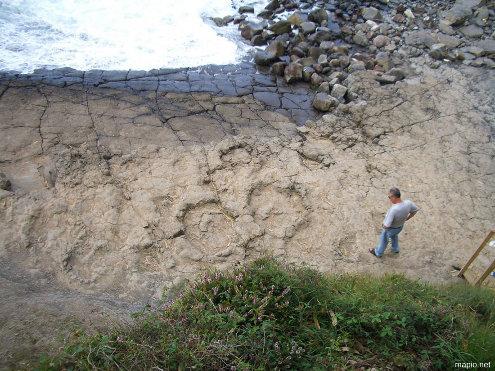 Vue prise depuis le haut de la falaise sur les traces de sauropode de la figure précédente, Colunga (Asturies, Espagne)