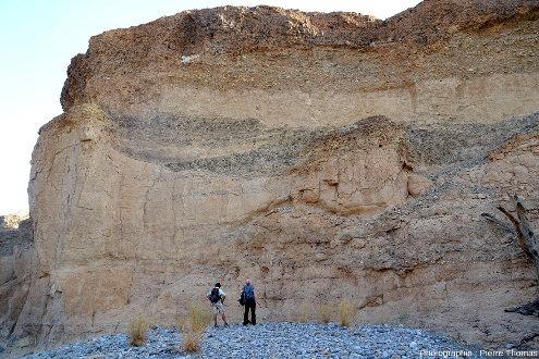 Vue d'ensemble d'un segment de la paroi du canyon de Sesriem (Namibie)