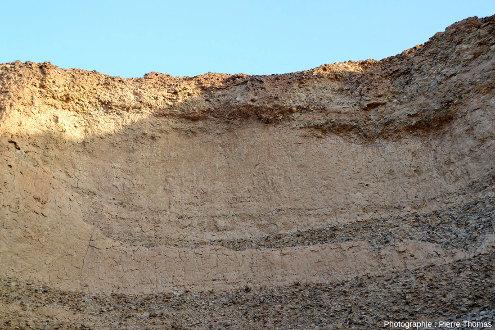 Lit argilo-sableux presque au sommet de la falaise du canyon de Sesriem (Namibie), à 1 ou 2m sous la surface actuelle