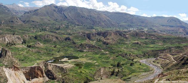 Vue d'ensemble sur les cultures en terrasse de la haute vallée de la Colca (Pérou), en amont du canyon