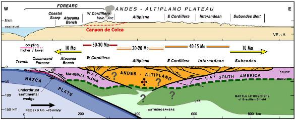 Coupe topographique et structure interne de la Cordillère des Andes au niveau des Andes péruviennes