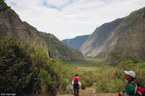 Le fond de la vallée de la rivière des Remparts, ile de La Réunion, dans une partie non affectée par l'éboulement de Mahavel (1965)