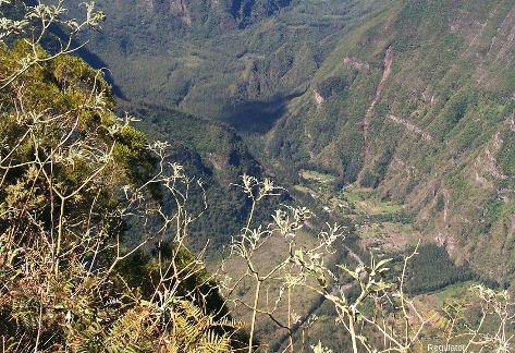 """Vue sur la rive gauche de la vallée des Remparts, ile de La Réunion, montrant des """"strates"""" parfois épaisses"""