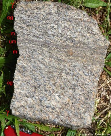 Bloc de granite affecté par une zone de cisaillement avec en son centre une bande grisâtre d'ultramylonite, où les cristaux préexistants ne sont plus visibles tellement la déformation a été intense