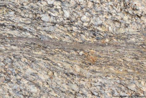 Détail d'une bande d'ultramylonite dans un granite du massif de l'Agly (Pyrénées-Orientales)