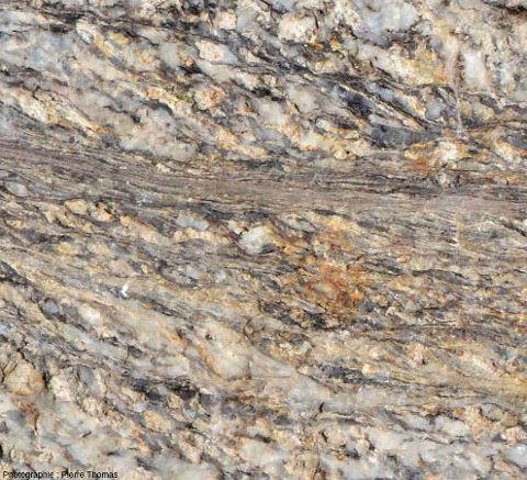 Zoom sur une bande d'ultramylonite dans un granite du massif de l'Agly (Pyrénées-Orientales)