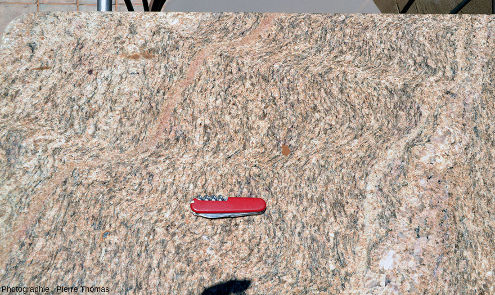 Mini-zones de cisaillement dans un gneiss, table du café-bar d'un hôtel de Sesriem, Namibie
