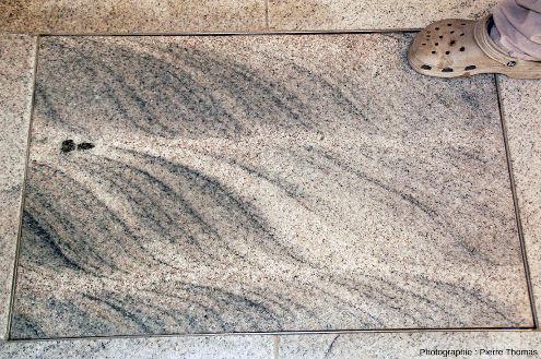 """Dalle de migmatite cisaillée au sol d'un hall de l'aéroport de New Delhi (Inde) """"découverte"""" sur le trajet Ladakh-France"""