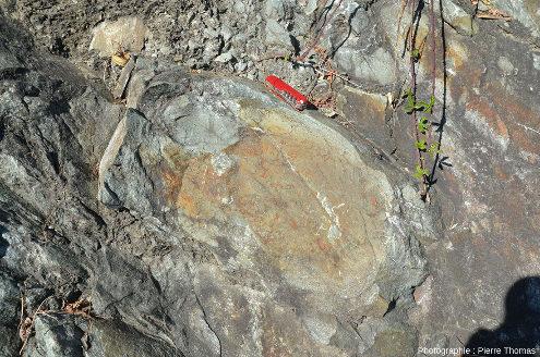 Détail sur le pillow lava inférieur de la photo précédente