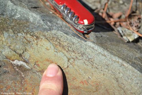 Détail de la bordure du pillow lava de la photo précédente où l'on reconnait les fameuses «varioles»
