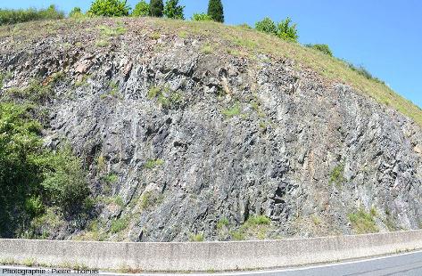 En bord de route près de Brussieu (Rhône), ce qui ressemble à un cortège filonien, constitué de la juxtaposition de filons doléritiques presque verticaux