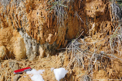 Zoom sur des concrétions carbonato-ferrugineuses sur les flancs externes de la levée issue de la Source de la Rotonde, Plan de Phazy (Hautes-Alpes)