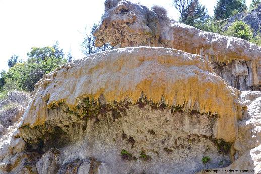 Vue depuis le bas du principal dépôt calcaire de la fontaine pétrifiante de Réotier (Hautes-Alpes), là où coule la majorité du débit de la source