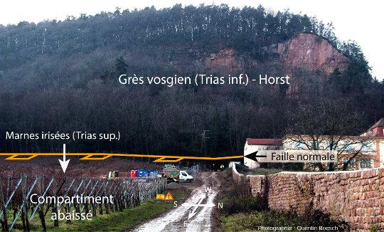 Vue d'ensemble du site de Voegtlinshoffen
